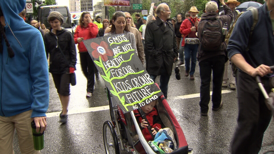 "A protester pushes her child in a stroller during the ""March Against Monsanto"" in Vancouver Saturday, May 25, 2013. (CTV)"