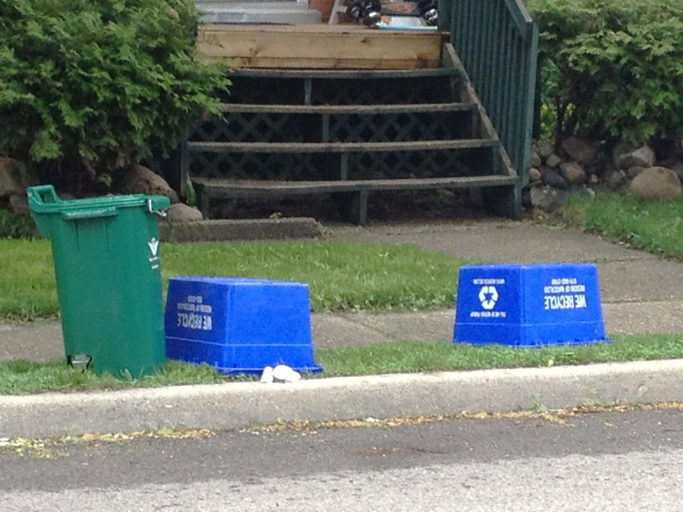 A green organics bin and two blue recycling bins are seen in Waterloo, Ont., on Tuesday, May 28, 2013. (David Imrie / CTV Kitchener)