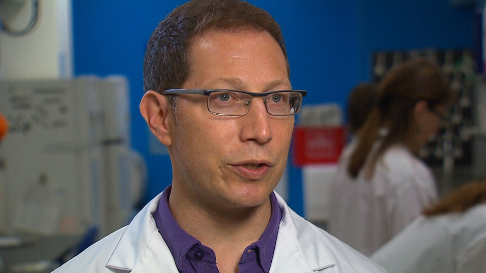Jonathan Bramson, director of McMaster's Immunology Research Centre, sees the research as evidence that the immune system is able to fight cancer.