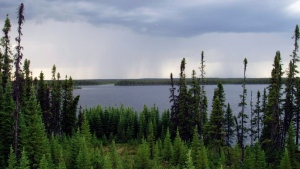 An attempt backed by millions of dollars in public funds to get UNESCO recognition for an extensive stretch of boreal forest along the Manitoba-Ontario boundary appears to be making steps forward. (International Boreal Conservation Campaign, Matt Medler)