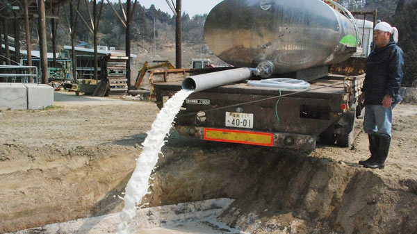 A farmer dumps raw milk in a hole made at his farmland in Kawamata, Japan, Thursday, March 31, 2011. (AP Photo/Kyodo News)