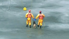 Firefighters pull off a daring rescue on Friday, April 1, 2011, pulling a dog and its owner from a frozen pond.