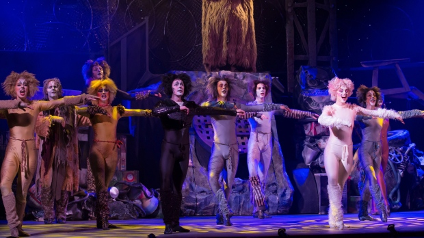 """Cats"" the musical"