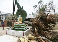 A resident walks past a fallen tree after a devastating cyclone in Yangon, Burma on Tuesday, May 6, 2008. (AP Photo)
