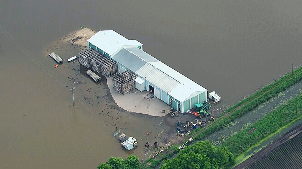 A farm is surrounded by flood waters in Holland Marsh in Bradford, Ont. on Monday, June 17, 2013.