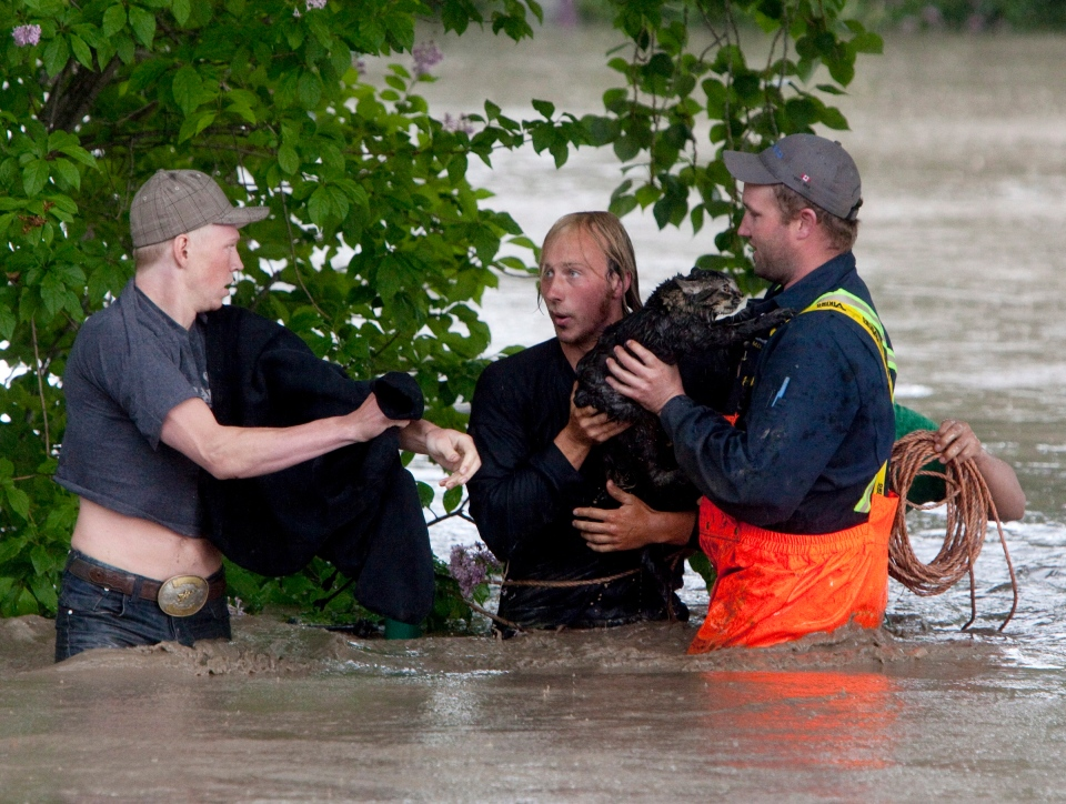 Kevan Yeats and his cat Momo are led to safety after escaping his pickup truck in a flood in High River, Alta., on June 20, 2013. (Jordan Verlage / THE CANADIAN PRESS)
