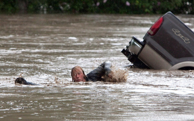 Cat swept away in Alberta floods swims to safety