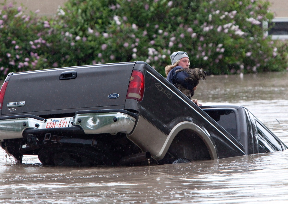 Kevan Yeats crawls out the back window of his pick up truck with his cat Momo as flood waters sweep him downstream and submerge the cab in High River, Alberta on June 20, 2013 after the Highwood River overflowed its banks. (Jordan Verlage / THE CANADIAN PRESS)