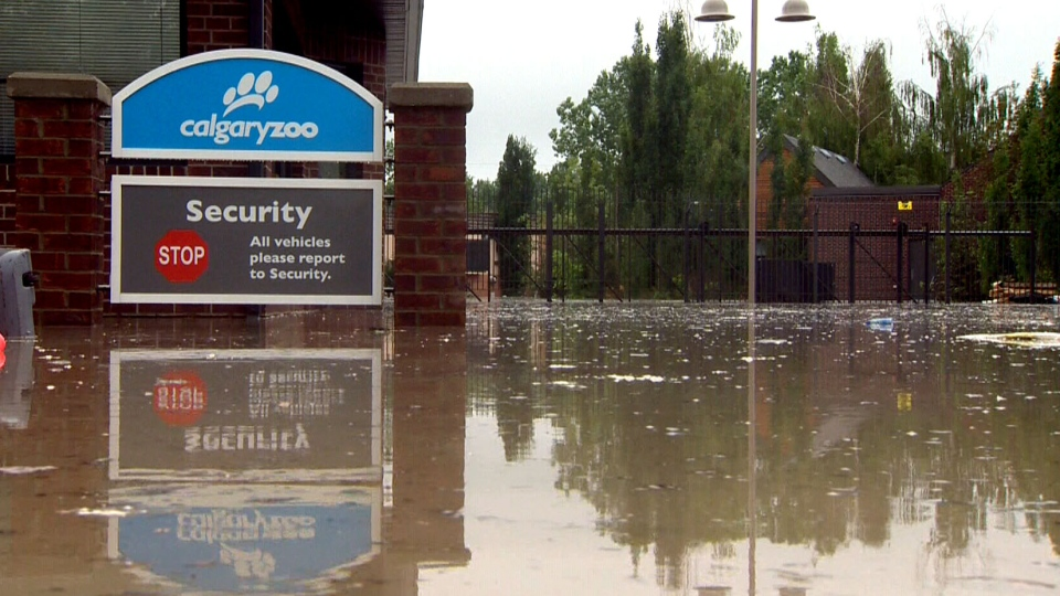 The Calgary Zoo will remain closed for the next two weeks after high waters from the Bow River flooded St. George's Island, where most of the zoo sits.
