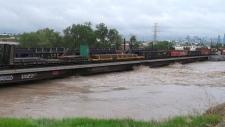 Bonnybrook Bridge during height of flooding