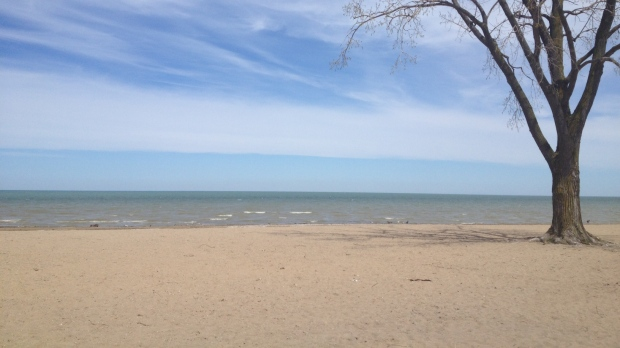 Water at Sandpoint Beach in Windsor has been deemed unsafe for swimming on June 28, 2013. (Melanie Borrelli/ CTV Windsor)