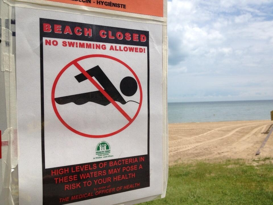 Only one beach safe for swimming in Windsor and Essex County: Health