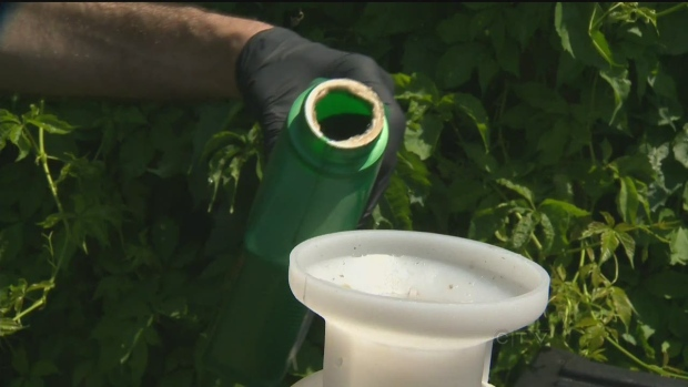 CTV Winnipeg: Province-wide pesticide ban