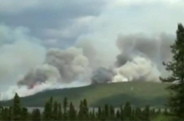 Labrador forest fire