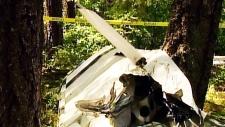 B.C. plane crash