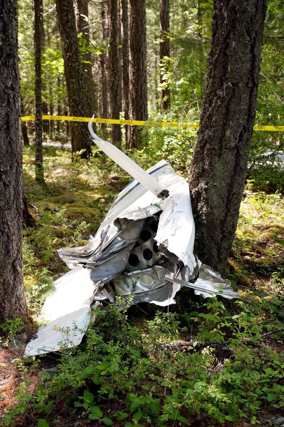 The severed wing of a Cessna 150 lies near the parking lot of Narin Falls Provincial Park, near Pemberton, after a collision between it and a glider on Saturday, June 29, 2013. (David Buzzard / THE CANADIAN PRESS)