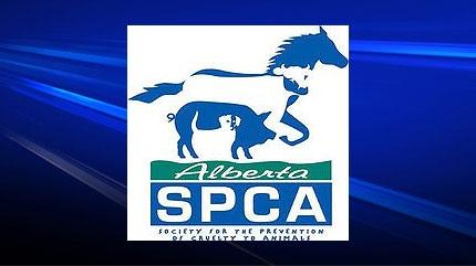 Alberta SPCA