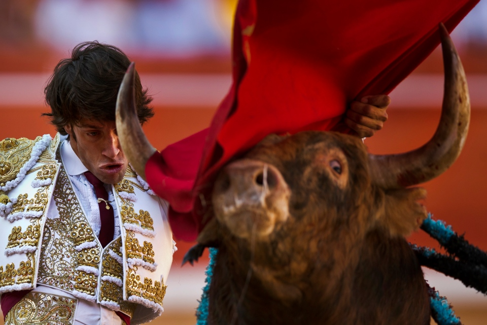 Spanish bullfighter Antonio Nazare performs with an Alcurrucen fighting bull during a bullfight of the San Fermin festival, in Pamplona, Spain, Sunday, July 7, 2013. (AP / Daniel Ochoa de Olza)