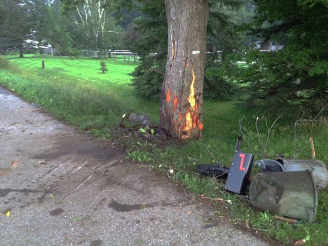 Kitchener Man Dies After Car Hits Tree Near St Agatha