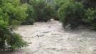 Cooksville creek toronto flooding