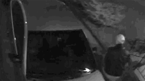 Toronto police released a security camera image of a suspected vandal on April 22, 2011.