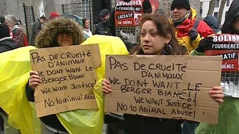 Protesters demanded the city cut contracts with Berger Blanc