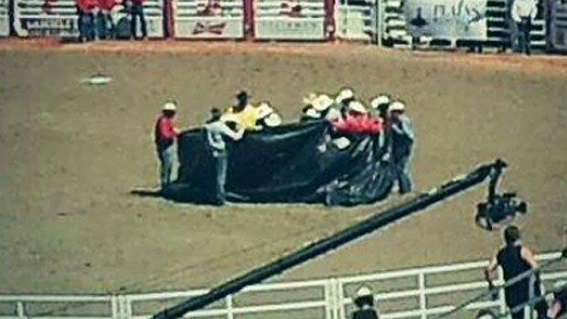 A group of veterinarians were forced to euthanize a steer that was critically injured during the final round of competition in the steer wresting event on July 10, 2013. (Photo courtesy: Dean Yeats)