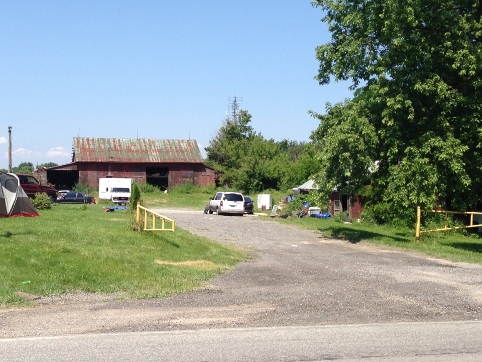 Animal cruelty charges have been laid after an investigation at a farm in Tecumseh, Ont., on Friday, July 12, 2013. (Sacha Long / CTV Windsor)