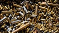 B.C. gun amnesty