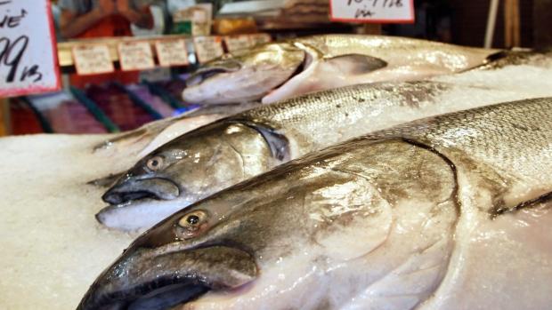 Fish Omega-3