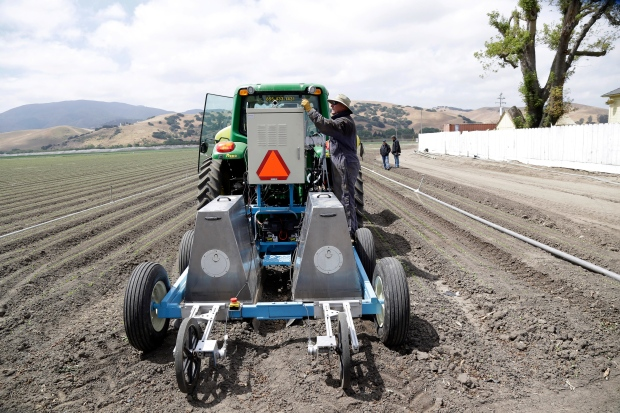 The Lettuce Bot in Salinas, Calif.