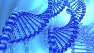 A DNA strand is shown in this illustration. (suravid / shutterstock.com)