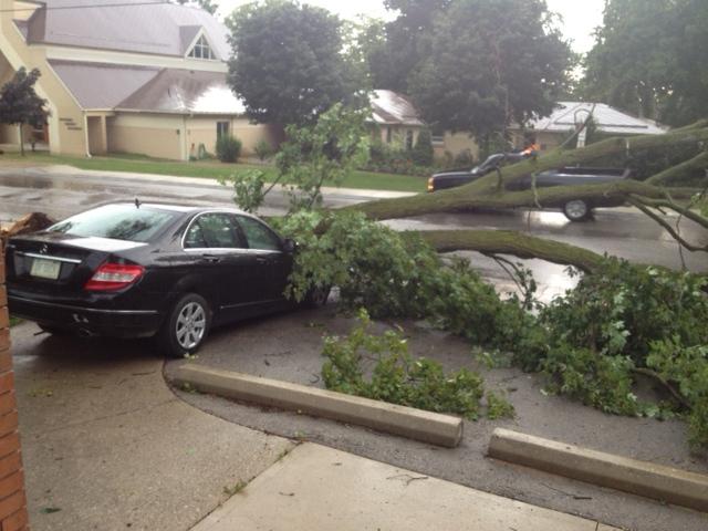 A car is damaged by a fallen tree in Wingham, Ont., Friday, July 19, 2013. (Scott Miller / CTV London)