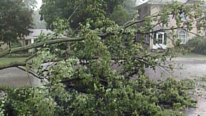 CTV London: Storm damage in southern Ontario