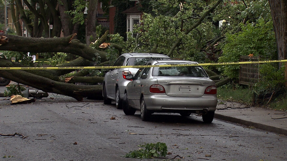 Police tape surrounds two uprooted trees blocking a street after a storm passed through Toronto, Friday, July 19, 2013.