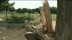 CTV Montreal: One dead after violent storm