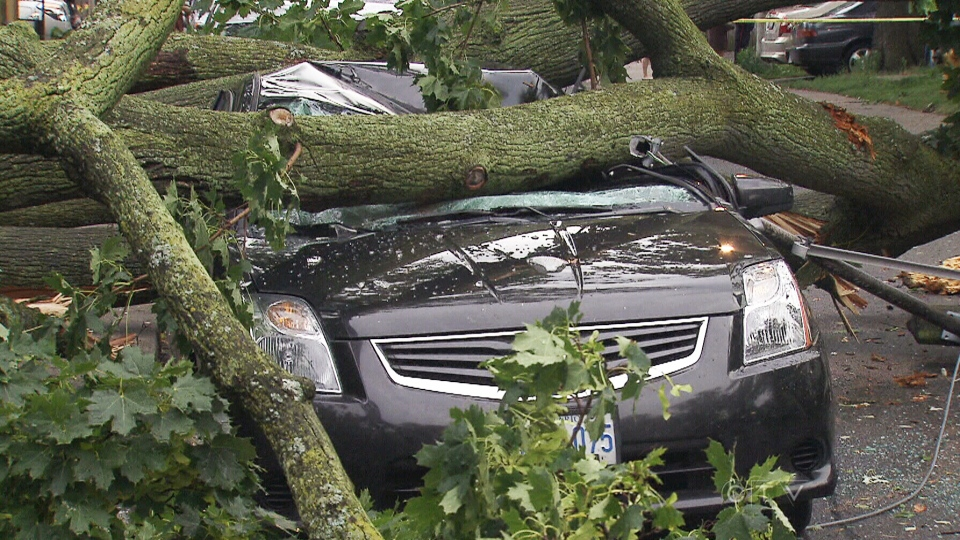 A car is pinned under a tree on the side of a road the day after a heavy storm in Toronto, Saturday, July 20, 2013.