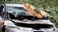 Car damaged from summer storm Ontario
