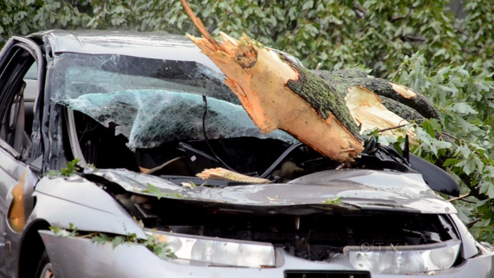 A car is damaged by a fallen tree in Hamilton, Ont., Saturday, July 20, 2013.