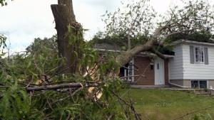 CTV National News: Cleanup after summer storm