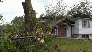 CTV National News: Cleanup after summer storm
