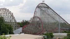 Woman falls to her death from roller coaster