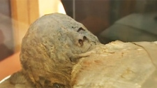 This ancient mummy was subject to high-tech research (May 7, 2011)