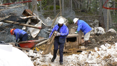 SPCA officers dismantle dog houses piled on top of a mass grave near Whistler, B.C. on May 2, 2011. (CTV)