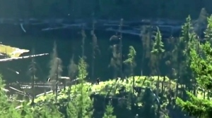 Caught on video: 2 alleged BC Sasquatch sightings