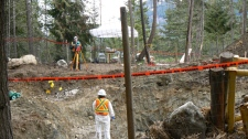 A team of BC SPCA constables, veterinarians and forensic scientists complete the exhumation of a mass grave of sled dogs near Whistler, B.C., on Sunday May 8, 2011. (HO, BC SPCA - Lorie Chortyk / THE CANADIAN PRESS)