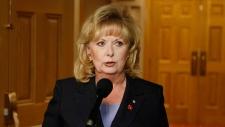 Wallin calls audit process 'fundamentally flawed'