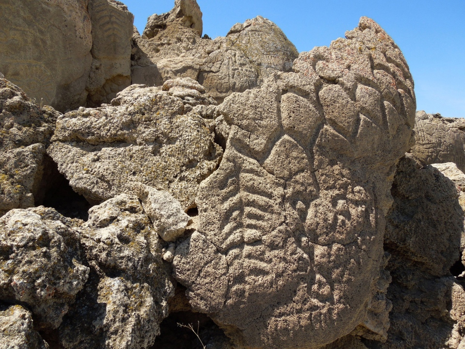 Ancient carvings on limestone boulders are seen in northern Nevada's high desert near Pyramid Lake in this May 2012 photo.  (USGS / Larry Benson)