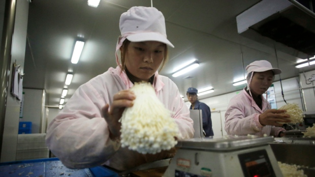 China's manufacturing slump stabilizing