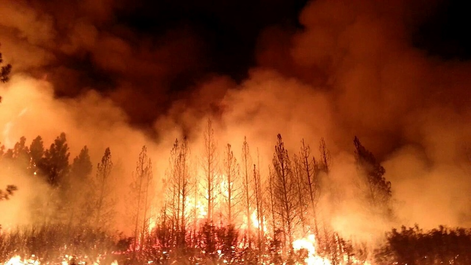 The Rim Fire burns near Yosemite National Park, Calif., in this undated photo provided by the U.S. Forest Service.